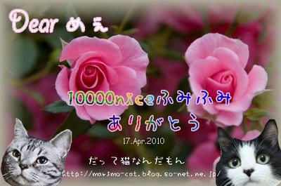 m_10000-niceカード.jpg